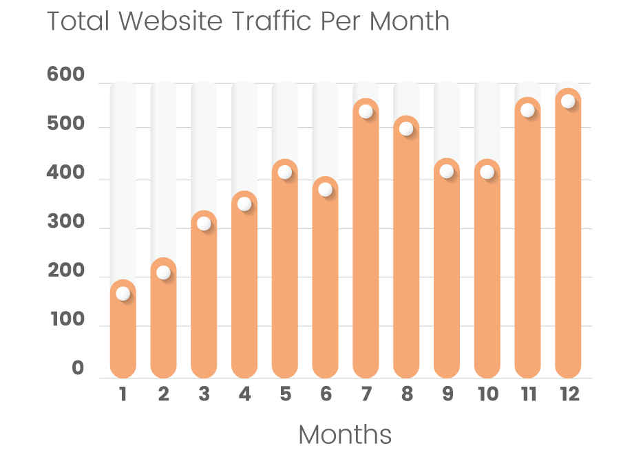 Website traffic results graph